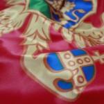 Štampa zastava postojane boje
